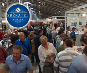 The Sberatel fair will grow by more than 10 percent this year!