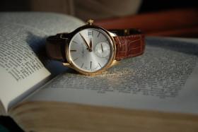hodinyk moser